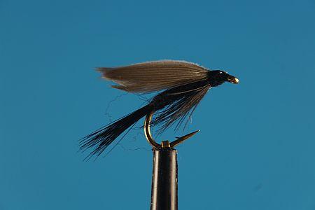 Black Gnat 1000vliegen