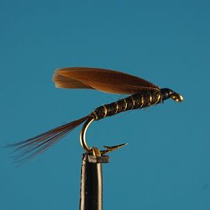 Lesse No.1 1000vliegen
