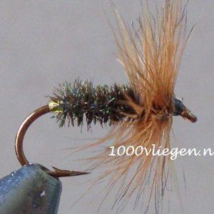 1000vliegen.nl-droge vlieg-Coch Y Bonddu-forel-voorn - dry fly-vliegvissen-rivier-vliegvisser-drijvend--venlo