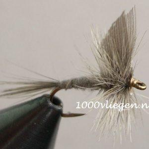 1000vliegen.nl-droge vlieg-blue dun -forel-vlagzalm-voorn-zomermaanden-dry fly-vliegvissen-rivier-vliegvisser-drijvend--venlo