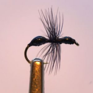 1000vliegen-nl-drijvend-insectenterrestrials-ant-epoxy-black-miertje-forel-venlo-vijver-river-vliegvissen-vliegvisser-vlagzalm-wf-lijn