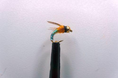 1000vliegen.nl, forel, regenboog forel, rivier, nymph, BH Lightning, venlo, vliegvissen, vliegvisser, voorn
