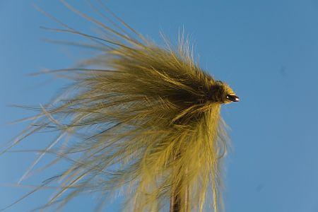 Grassy Jelle 1000vliegen