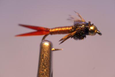 1000vliegen-nl-tungsten-tungsten-nymph-copper-john-forel-regenboogforel-venlo-vijver-river-poldervliegvissen-vliegvisser-vlagzalm-wf-lijn