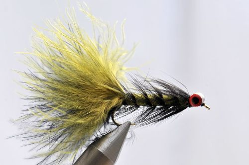 1000vliegen.nl, karper, kopvoorn, Crayfish Bugger, roofvis,venlo,vliegvissen, vliegvisser, rivier, reservoir, wf lijn, leader, tippet