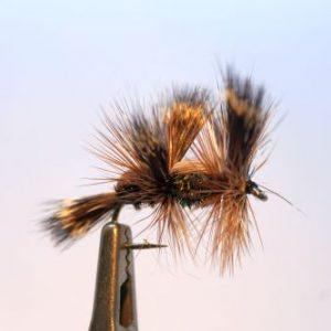 1000vliegen.nl, drijvend, insecten,terrestrials, Double Humpy Peacock, double humpy, , pauw, karper, kopvoorn, forel, venlo, vijver, river, vliegvissen, vliegvisser, vlagzalm, wf lijn,