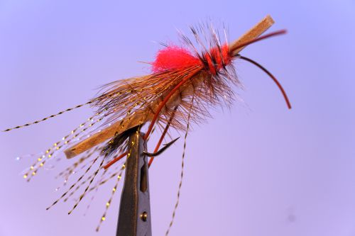 1000vliegen.nl, drijvend, insecten,terrestrials, foamulator,dropper, patagonië, steenvliegen, foam vlieg, forel, regenboogforel, baars venlo, vijver, river, vliegvissen, vliegvisser, vlagzalm, wf lijn,