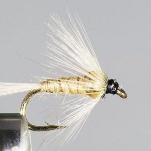 1000vliegen.nl, tungsten, tungsten nymph, Hendrickson BH, voorn wintervoorn,forel, regenboogforel, baars, voorn, venlo, vijver, river, polder,vliegvissen, vliegvisser, vlagzalm, wf lijn