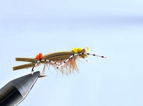 1000vliegen-nl-drijvend-insectenterrestrials-hopper-chernobyl-s-fork-hopper-sprinkhaan-forel-venlo-vijver-river-vliegvissen-vliegvisser-vlagzalm-wf-lijn