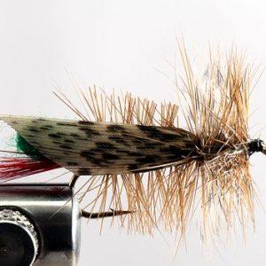 1000vliegen-nl-drijvend-insectenterrestrials-hopper-joe-green-sprinkhaan-forel-venlo-vijver-river-vliegvissen-vliegvisser-vlagzalm-voorn-baars-wf-lijn