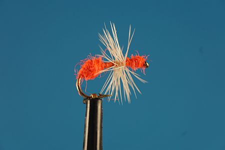 Ant Orange 1000vliegen