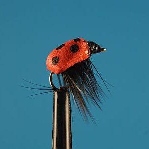 Lady Bug Foam 1000vliegen