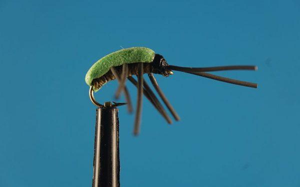 Leaf hopper 1000vliegen