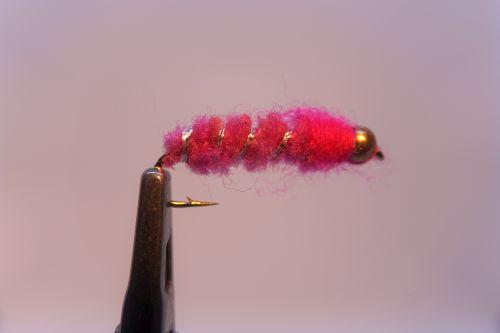 1000vliegen.nl,nymphen, Ijssel Nymph Pink, venlo, baars, voorn, brasem, roofbeli, winde, ijssel ,rivier,beetverklikker,vliegvissen, vliegvisser, , wf lijn
