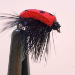 1000vliegen.nl, drijvend, insecten,terrestrials, Lady bug, Lady bug foam, lieveheersbeestje , forel, venlo, vijver, river, vliegvissen, vliegvisser, vlagzalm, wf lijn