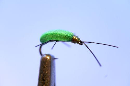 1000vliegen.nl, drijvend, insecten,terrestrials, leaf hopper, bladluis, , forel, venlo, vijver, river, vliegvissen, vliegvisser, vlagzalm, wf lijn