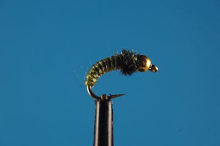 Caddis Larve Olive 1000vliegen