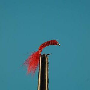 Red Mosquito Larva 1000vliegen