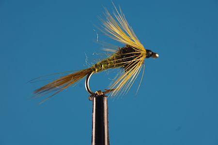 Cruncher Olive 1000vliegen