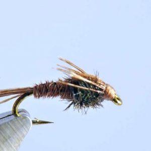 1000vliegen.nl,nymphen, PT Pheasant, Pheasant Tail, venlo, , voorn, witvis, beekjes, polder, forel, baars, river,vliegvissen, vliegvisser, , wf lijn