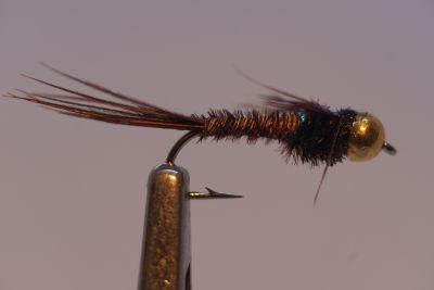 1000vliegen-nl-tungsten-tungsten-nymph-caddis-pupa-tan-caddis-forel-regenboogforel-venlo-vijver-river-poldervliegvissen-vliegvisser-vlagzalm-wf-lijn
