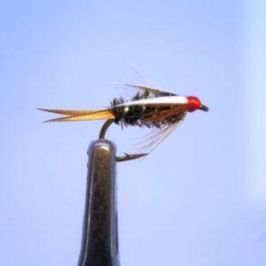 1000vliegen-nl,nymphen-prince-wtd-venlo-voorn-witvis-beekjes-polder-forel-baars-forelriverbeetverklikkervliegvissen-vliegvisser-wf-lijn