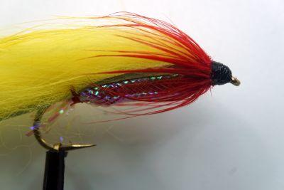 1000vliegen-nl-red-and-yellow-devil-roofvis-baars-snoek-roofblei-forel-regenboogforel-venlo-vijver-river-poldervliegvissen-vliegvisser-vlagzalm-wf-lijn