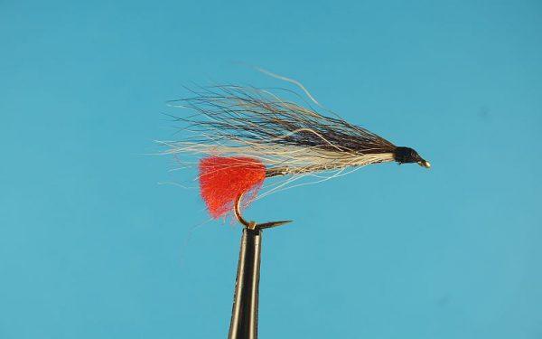 Black Nose Dase 1000vliegen
