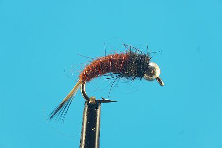 Slovenie Brown 1000vliegen.nl