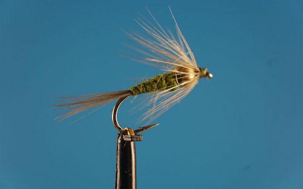 BWO - Blue Winged Olive 1000vliegen