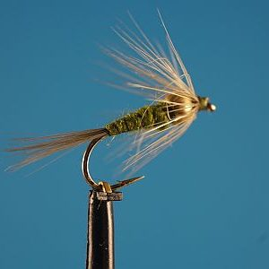 BWO - Blue Winged Olive 1000vliegen