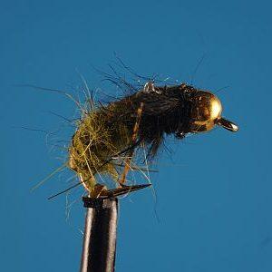 Shrimp Olive 1000vliegen