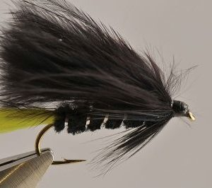 1000vliegen.nl, Viva,streamer, roofvis, baars, snoek, roofblei forel, regenboogforel,, venlo, vijver, river, polder,vliegvissen, vliegvisser, vlagzalm, wf lijn