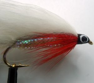 1000vliegen-nl-white-red-zonker-roofvis-baars-snoek-roofblei-forel-regenboogforel-venlo-vijver-river-poldervliegvissen-vliegvisser-vlagzalm-wf-lijn