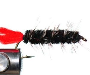 1000vliegen-nl-karper-kopvoorn-woolly-worm-blackforel-baars-venlovliegvissen-vliegvisser-rivier-reservoir-wf-lijn-leader-tippet