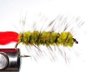 1000vliegen-nl-karper-kopvoorn-woolly-worm-oliveforel-baars-venlovliegvissen-vliegvisser-rivier-reservoir-wf-lijn-leader-tippet