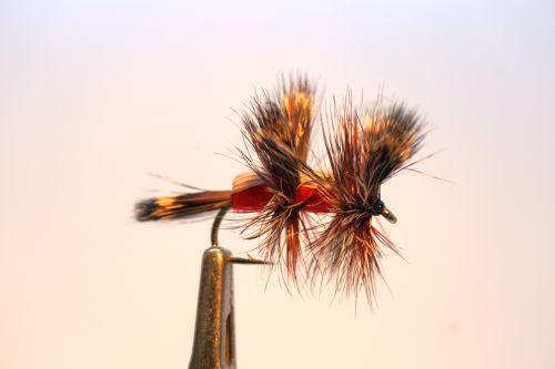 1000vliegen.nl, drijvend, insecten,terrestrials, Double hympy red, double humpy, humpy red,humpy rood, karper, kopvoorn, forel, venlo, vijver, river, vliegvissen, vliegvisser, vlagzalm, wf lijn,