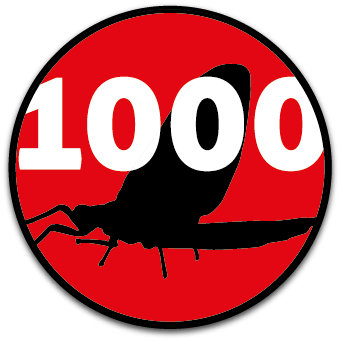 Vliegvissen met materialen van 1000VLIEGEN.nl, de webshop voor de Vliegvisser!