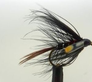 1000vliegen-nl-bibio-natte-vlieg-beauty-wet-fly-forel-natte-vliegen-reservoir-rivier-venlo-vijver-vliegvissen-vliegvisser-wf-lijn