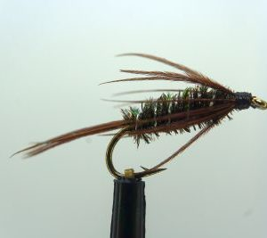 1000vliegen-nl-carey-special-peacock-natte-vlieg-forel-natte-vliegen-reservoir-rivier-venlo-vijver-vliegvissen-vliegvisser-wf-lijn