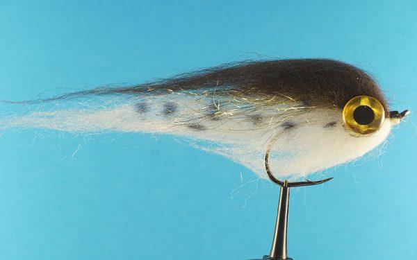 Brown/White Head 1000vliegen