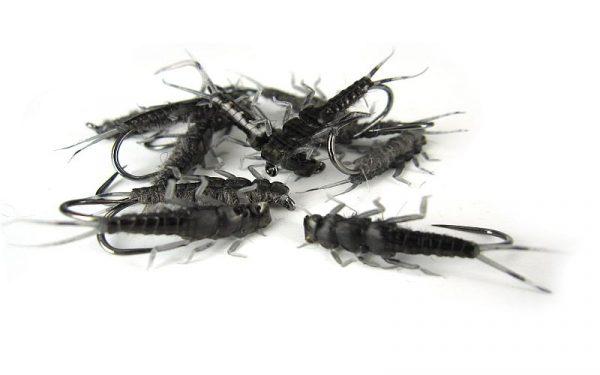 Stone Fly Clear Black Nymph 1000vliegen.nl
