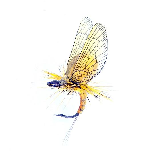 Mayfly emerger yellow/kaki 1000vliegen.nl